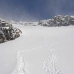 Sneeuwschoensporen...